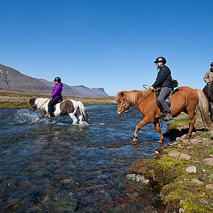 Riding through river in Westfjords