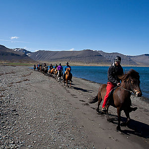 Riding on Icelandic horse