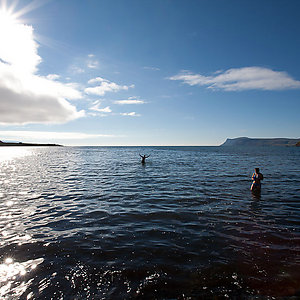Ocean swimming in Westfjords Iceland