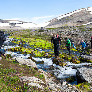 Hiking tour in Westfjord Iceland