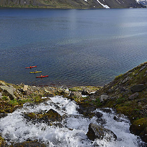Kayak trip in Westfjords Iceland